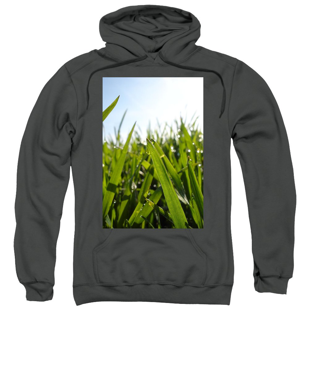 Flora Sweatshirt featuring the photograph Dewdrops On New Wheat by Susan Baker