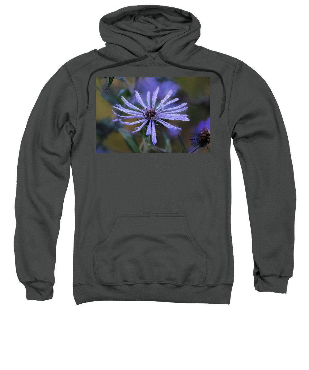Flower Sweatshirt featuring the photograph Dewey Petals by Frank Shoemaker