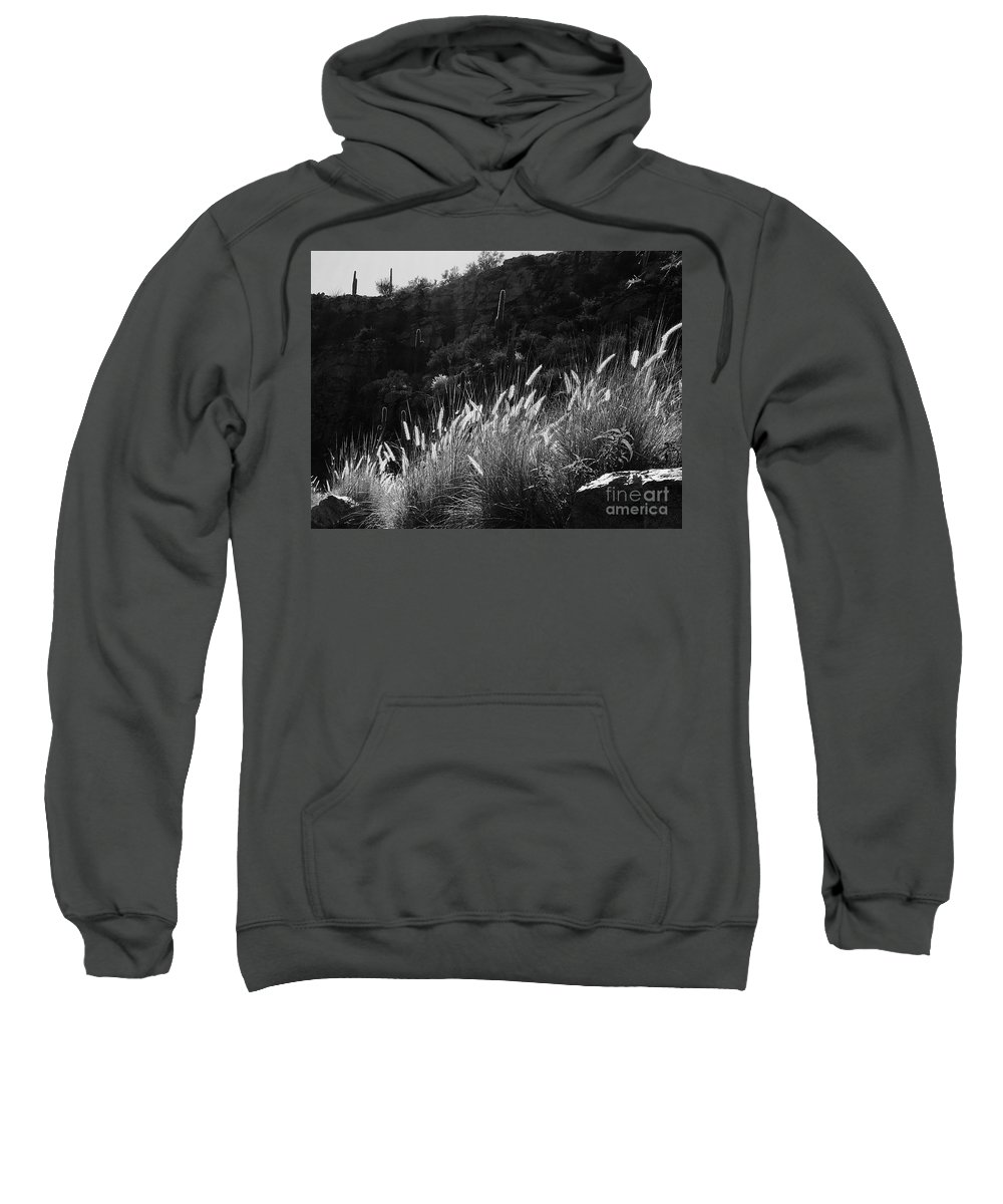 Marie Sweatshirt featuring the photograph Diagonal Grasses by Marie Webb