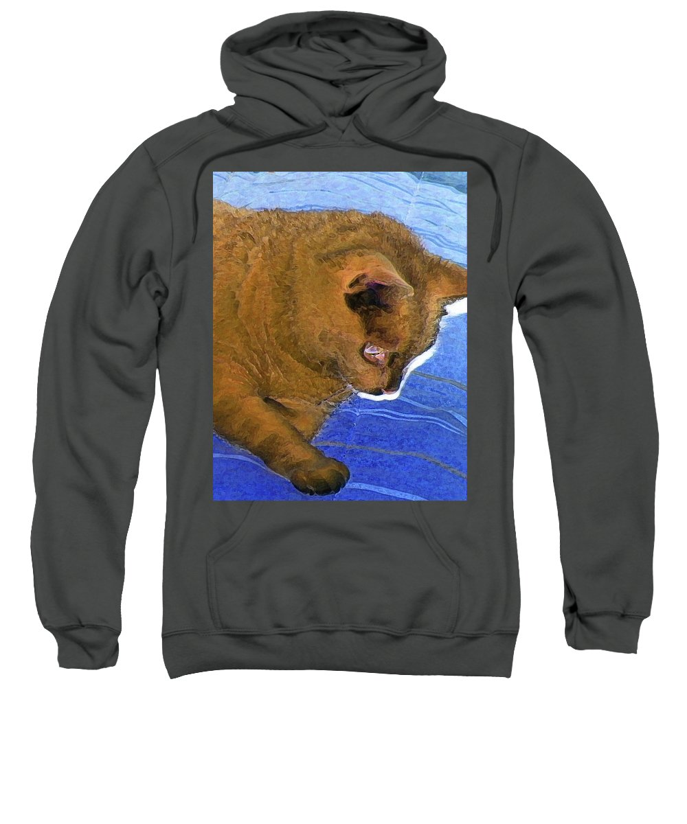 Abstract Sweatshirt featuring the digital art Did Mean Cat Get Under The Bed Again by Lenore Senior