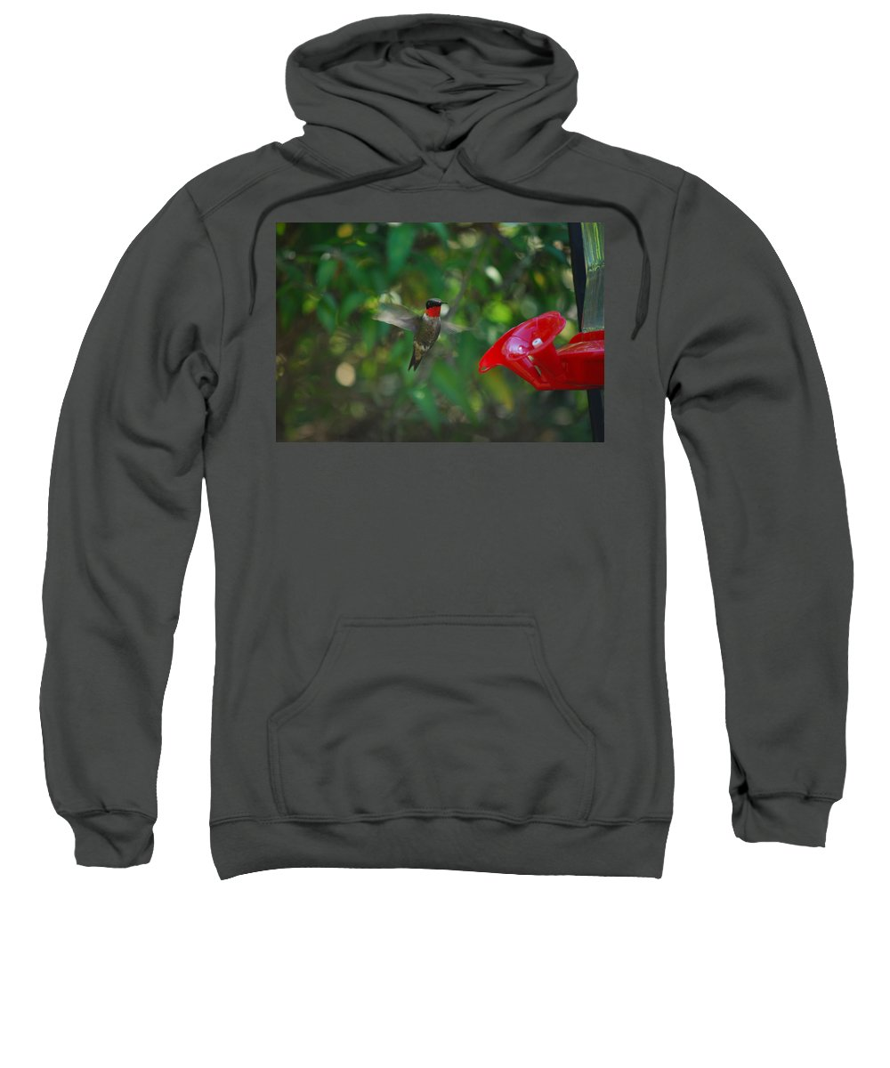 Hummingbird Sweatshirt featuring the photograph Dinner Time by Lori Tambakis