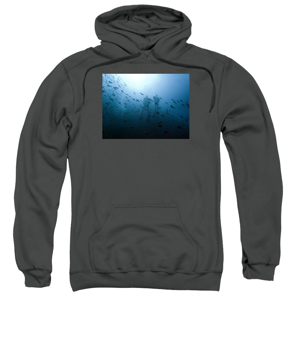 Underwater Sweatshirt featuring the photograph Diving With Fishes by Matt Swinden