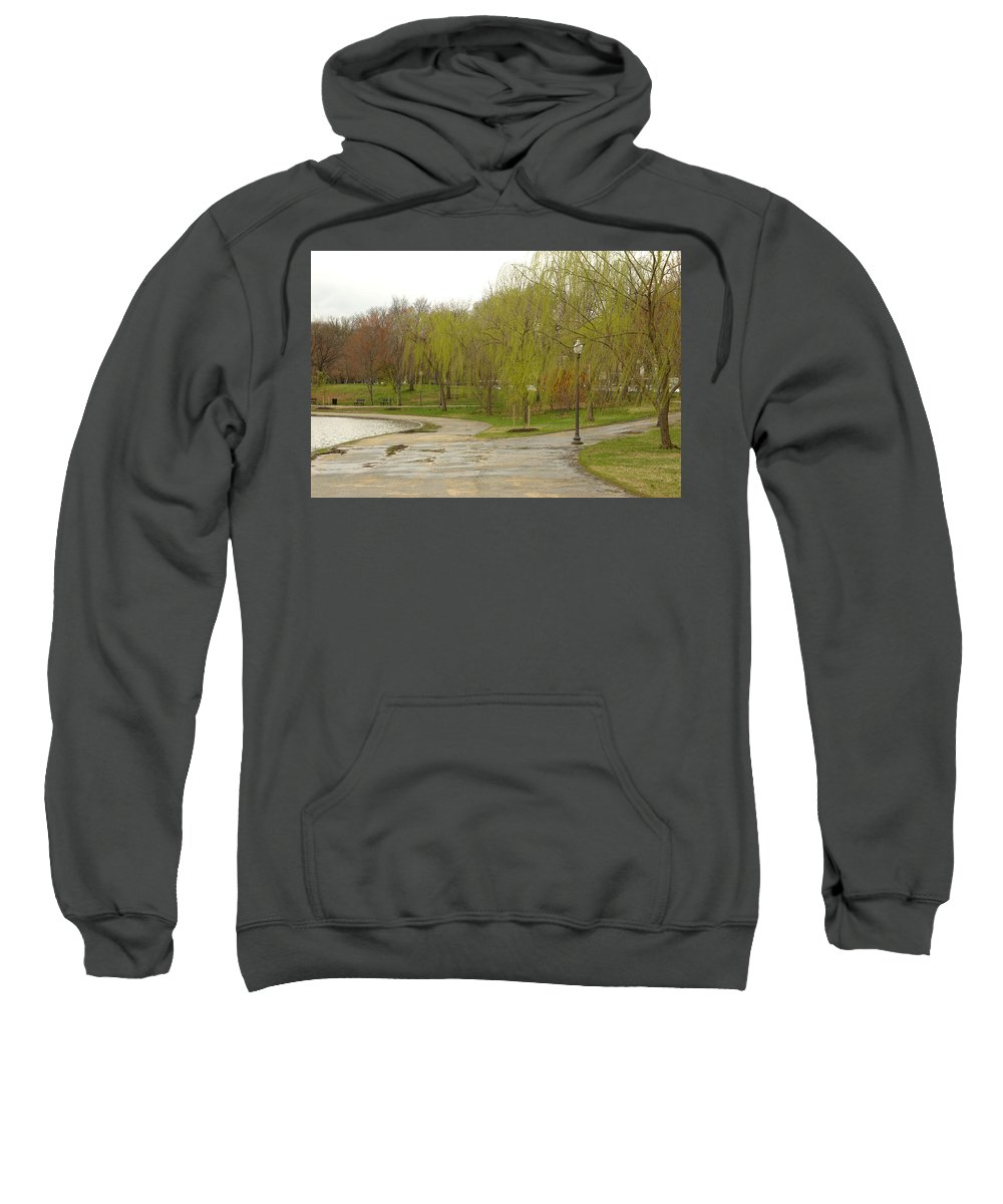 Landscape Park Washington Willow Tree Lake Sweatshirt featuring the photograph Dnrf0401 by Henry Butz