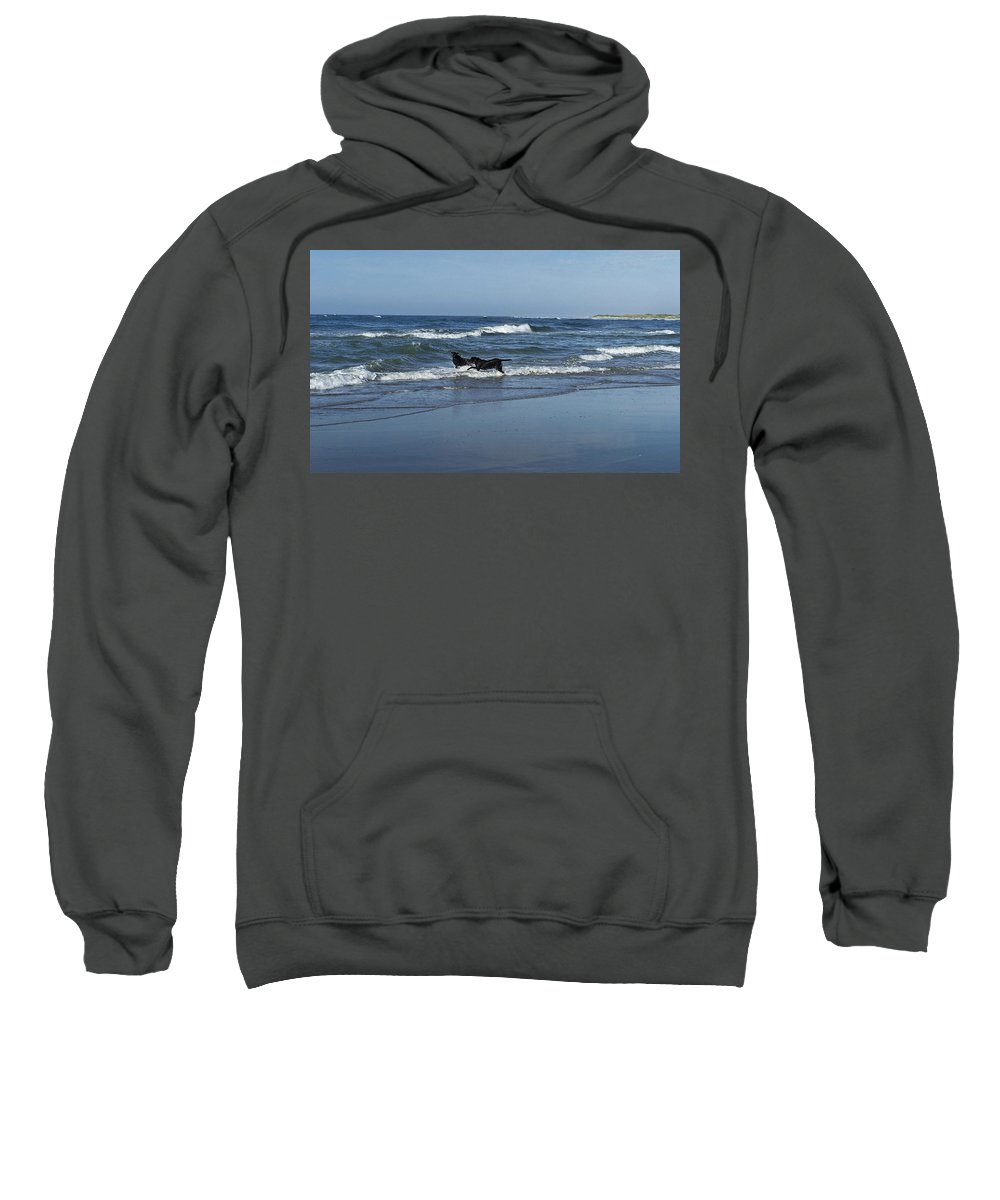 Dog Sweatshirt featuring the photograph Dogs In The Surf by Teresa Mucha