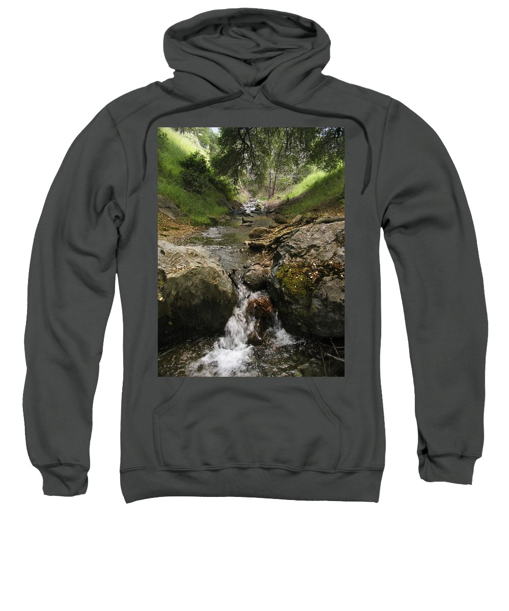 Mt. Diablo Sweatshirt featuring the photograph Donner Creek by Karen W Meyer