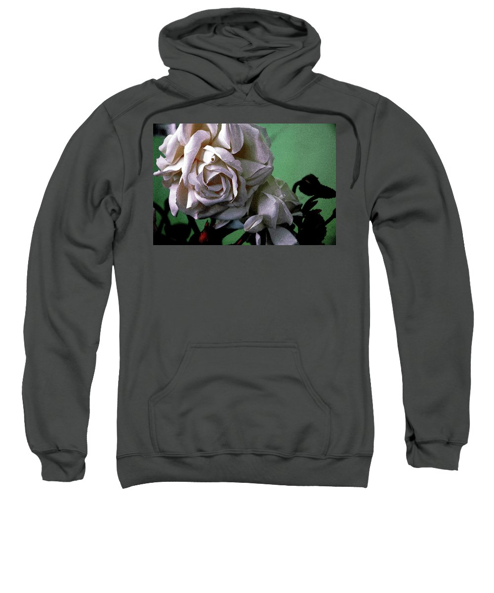 White Rose Sweatshirt featuring the photograph Dont Be Sad by Susanne Van Hulst