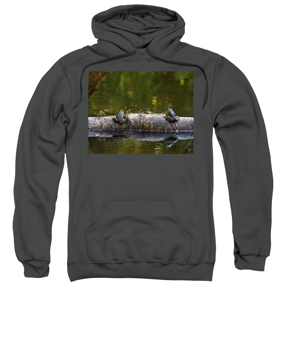 Frogs Sweatshirt featuring the photograph Don't You Love Mornings Like This by Susan Capuano