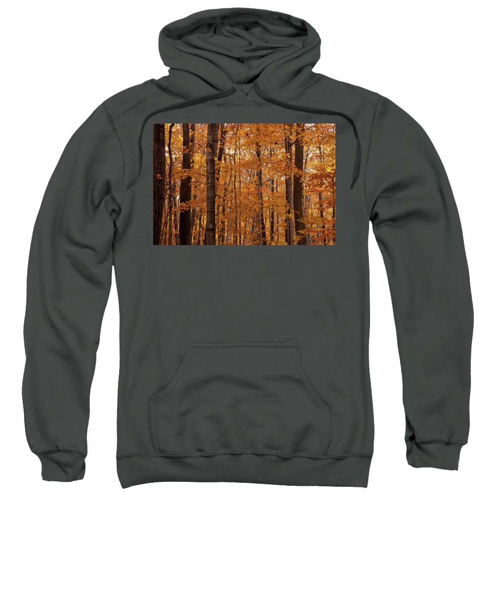 Landscape Sweatshirt featuring the photograph Door County No. 2 by M Bubba Blume