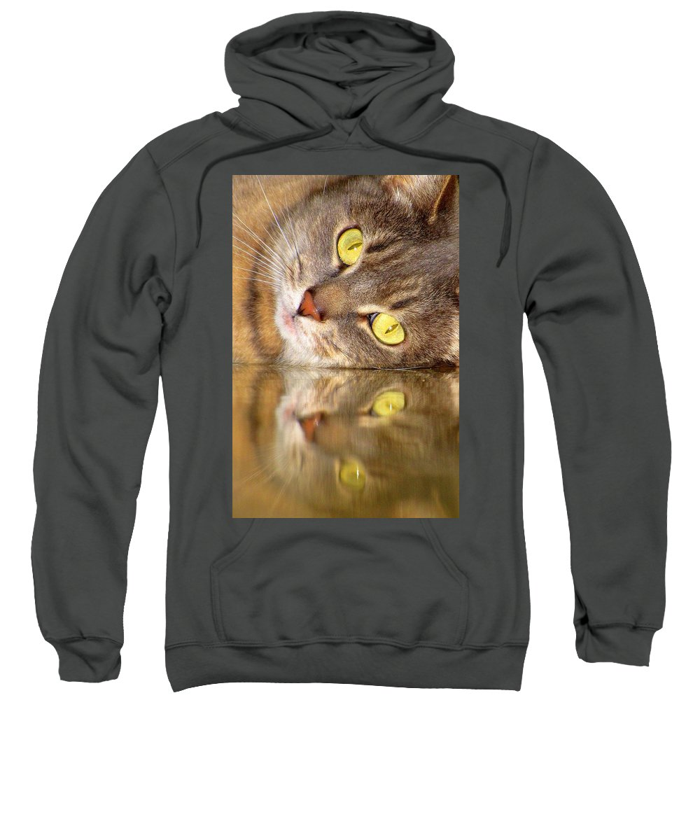 Cats Sweatshirt featuring the photograph Double Vision by Lori Pessin Lafargue