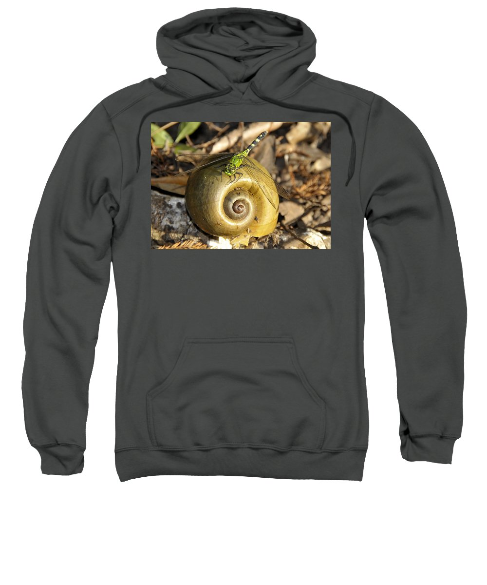 Fine Art Photography Sweatshirt featuring the photograph Dragonfly Dream by David Lee Thompson