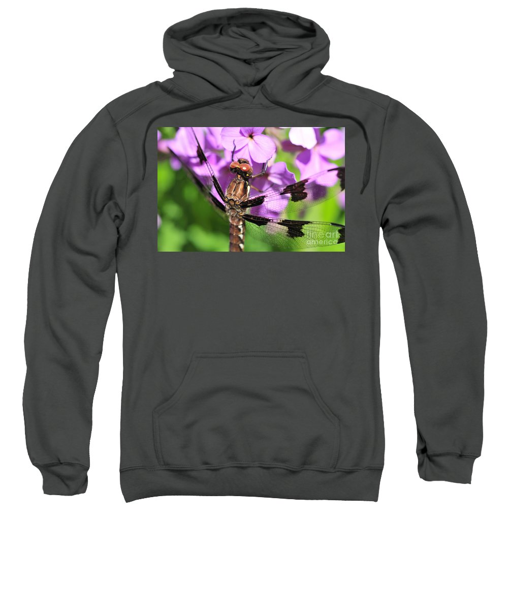 Abdomen Sweatshirt featuring the photograph Dragonfly by Joe Ng