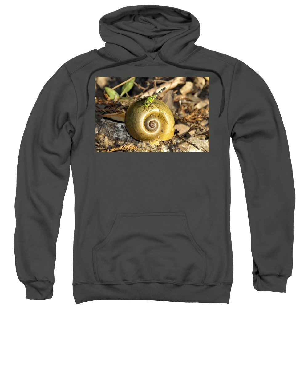 Dragonfly Sweatshirt featuring the photograph Dragonfly On Snail by David Lee Thompson