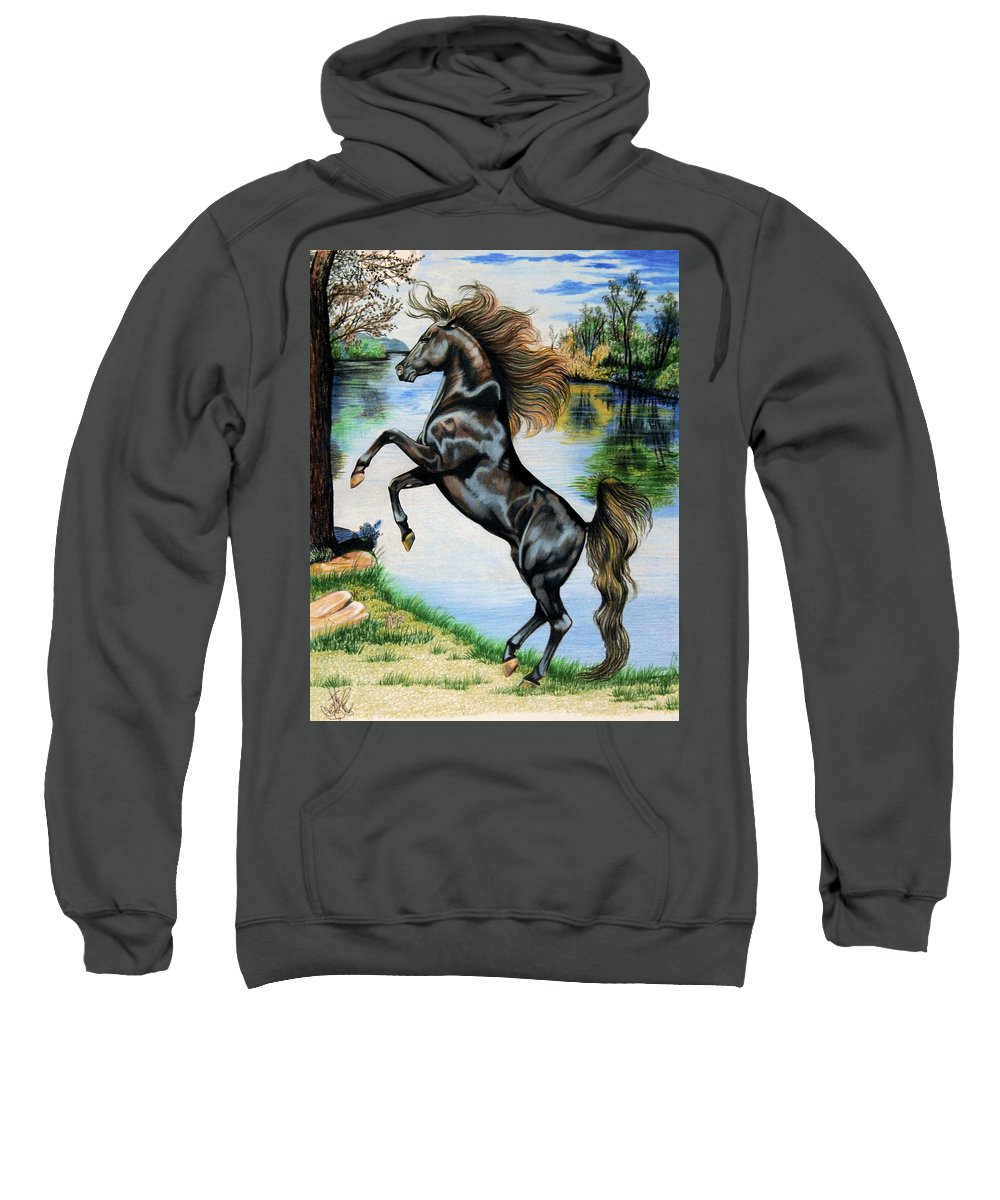 Drawing Of Black Horse Sweatshirt featuring the drawing Dream Horse Series 3015 by Cheryl Poland