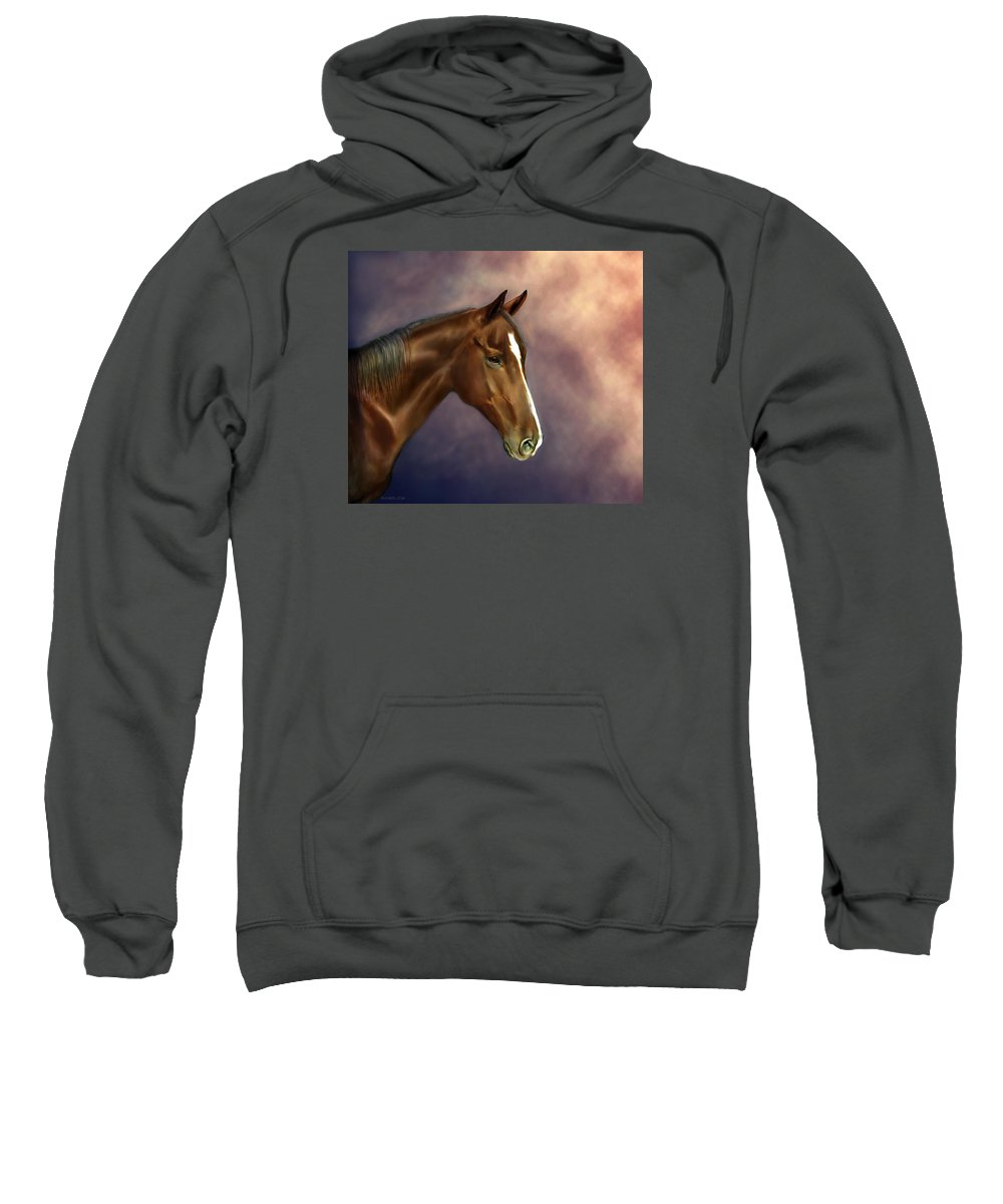Bhymer Sweatshirt featuring the painting Dreamer by Barbara Hymer