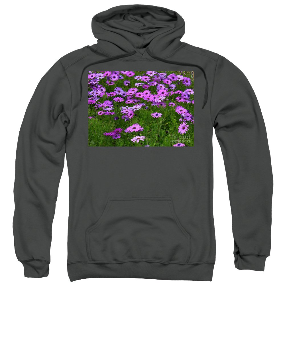 Floral Sweatshirt featuring the photograph Dreaming Of Purple Daisies by Carol Groenen