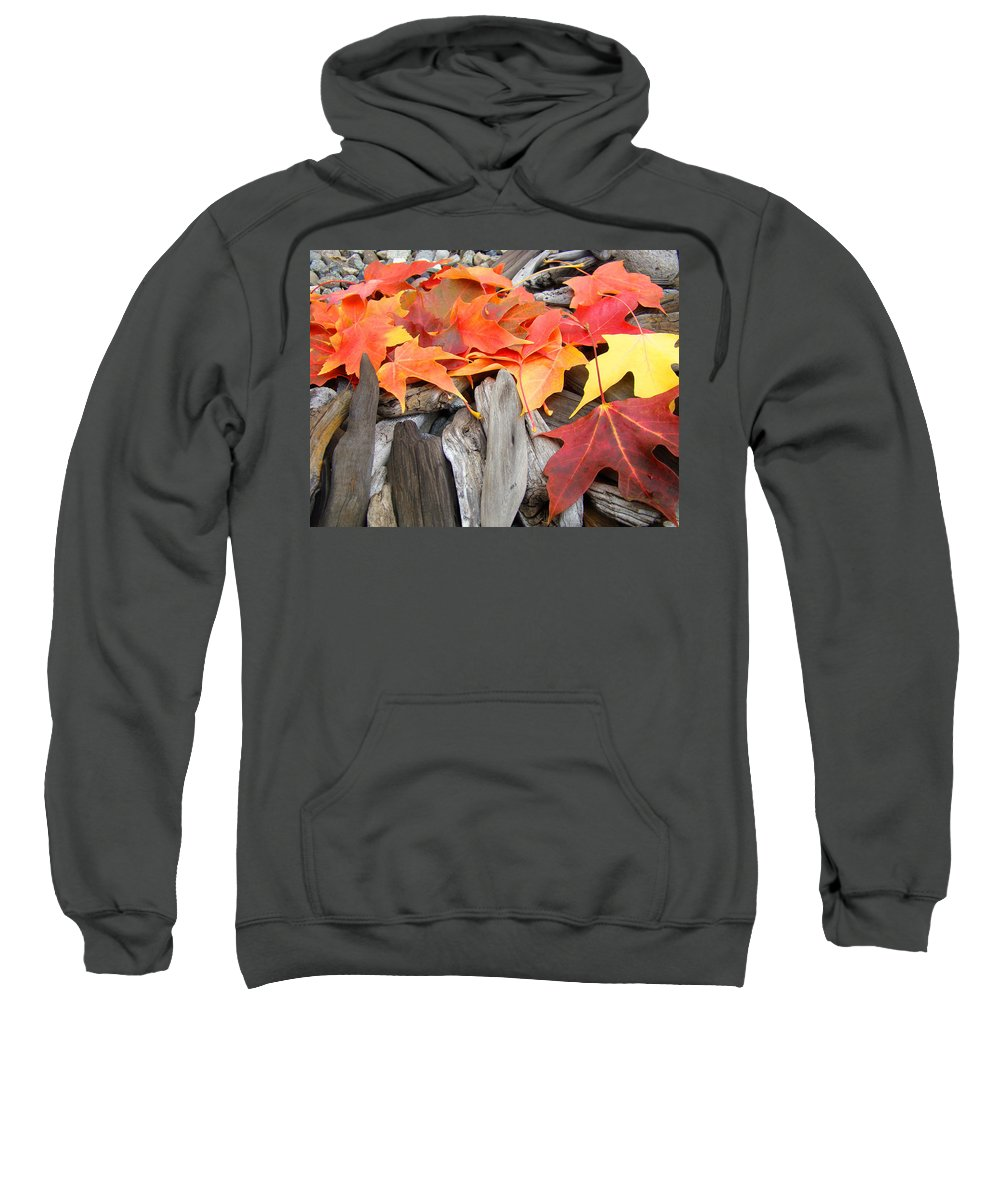 Autumn Sweatshirt featuring the photograph Driftwood Autumn Leaves Art Prints Baslee Troutman by Baslee Troutman