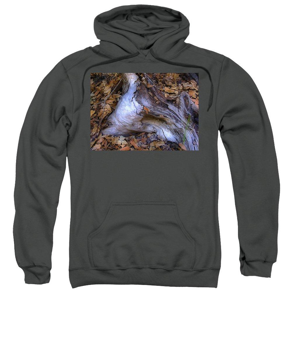Landscape Sweatshirt featuring the photograph Driftwood In Lahonda by Karen W Meyer