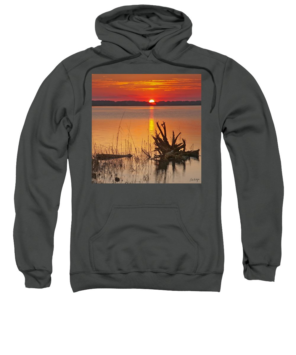 Canvas Sweatshirt featuring the photograph Driftwood by Phill Doherty