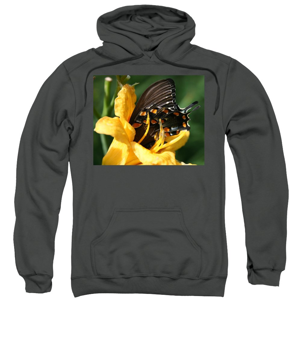 Nature Sweatshirt featuring the photograph Drink It In by Marla McFall