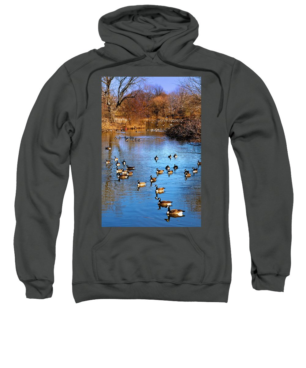 Birds Sweatshirt featuring the photograph Duck Duck Goose Goose by Bill Cannon