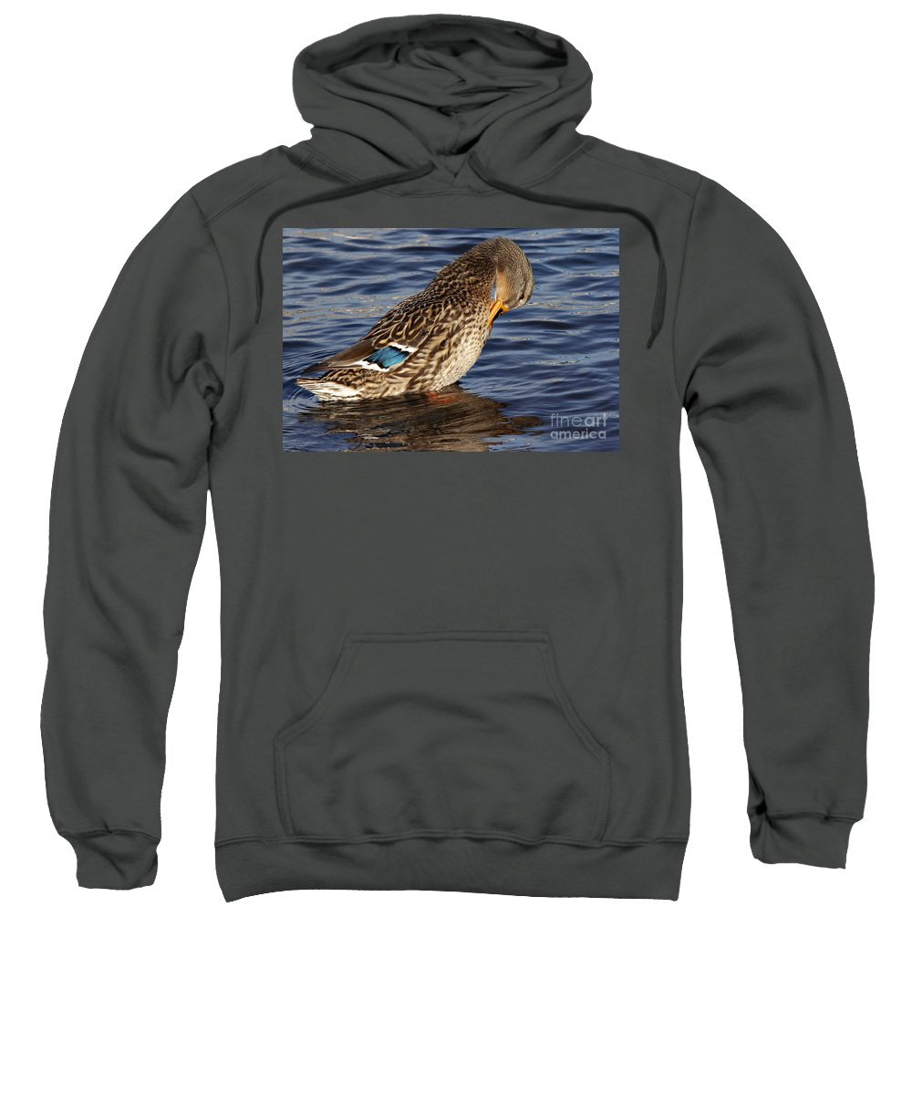 Nature Sweatshirt featuring the photograph Duck by Michal Boubin