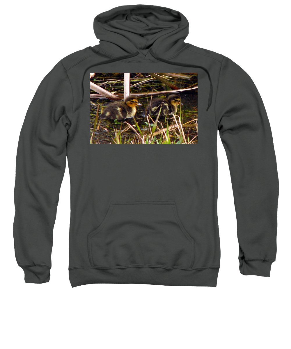 Duck Sweatshirt featuring the photograph Ducklings 2 by J M Farris Photography