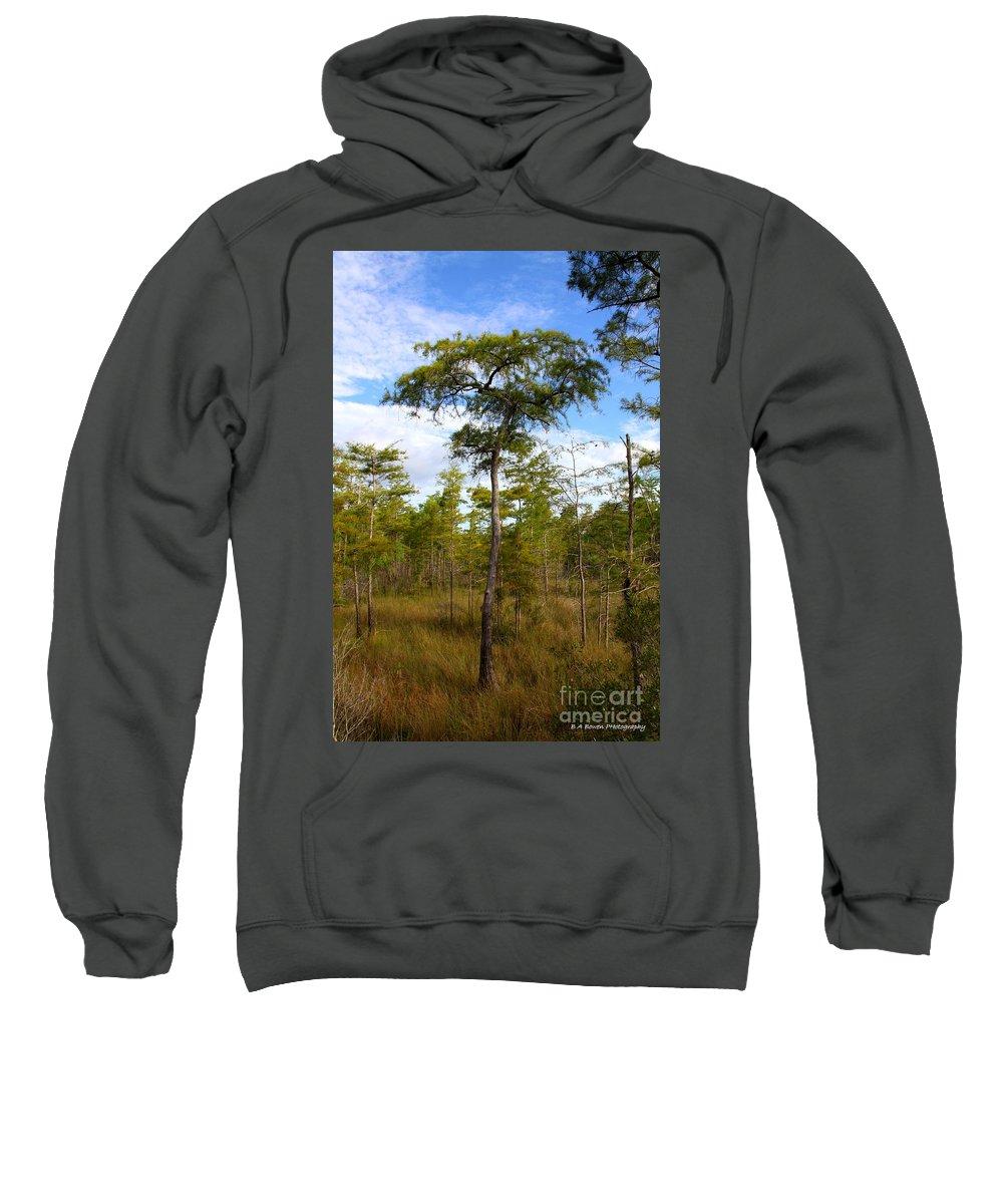 Dwarf Cypress Tree Sweatshirt featuring the photograph Dwarf Cypress Tree by Barbara Bowen