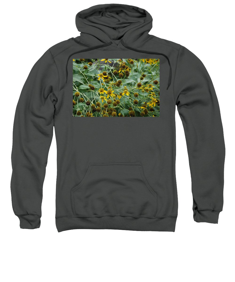 Macro Sweatshirt featuring the photograph Dying Sun Flowers by Rob Hans