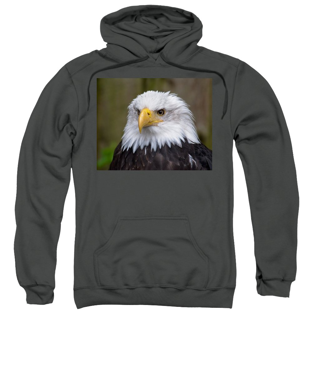 Eagle Sweatshirt featuring the photograph Eagle In Ketchikan Alaska by Michael Bessler