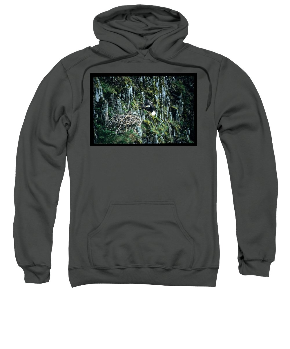 Wildlife Sweatshirt featuring the photograph Eagle Landing On Nest by Larry Allan