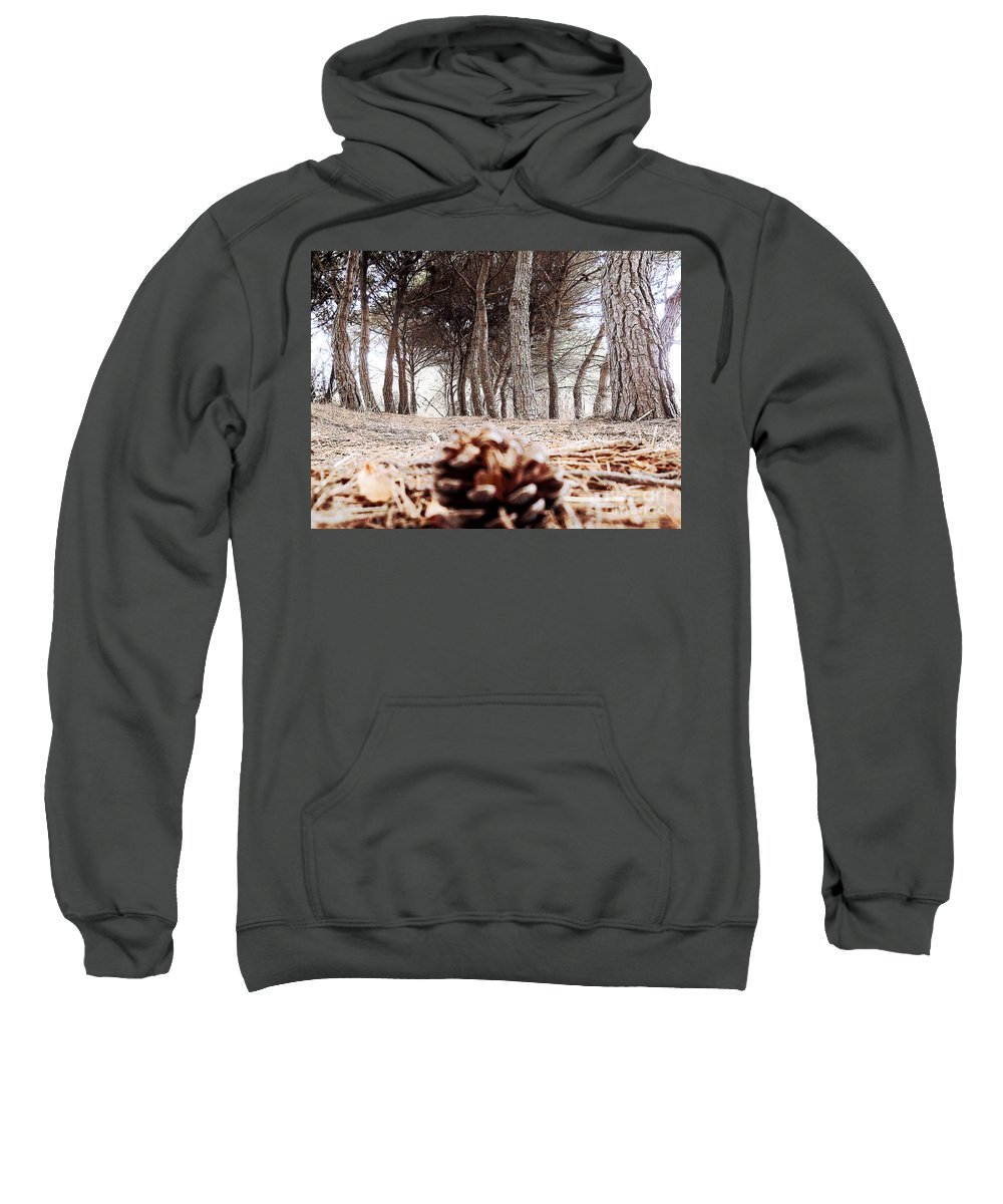 Italy Sweatshirt featuring the photograph Early Autumn by Ramona Matei