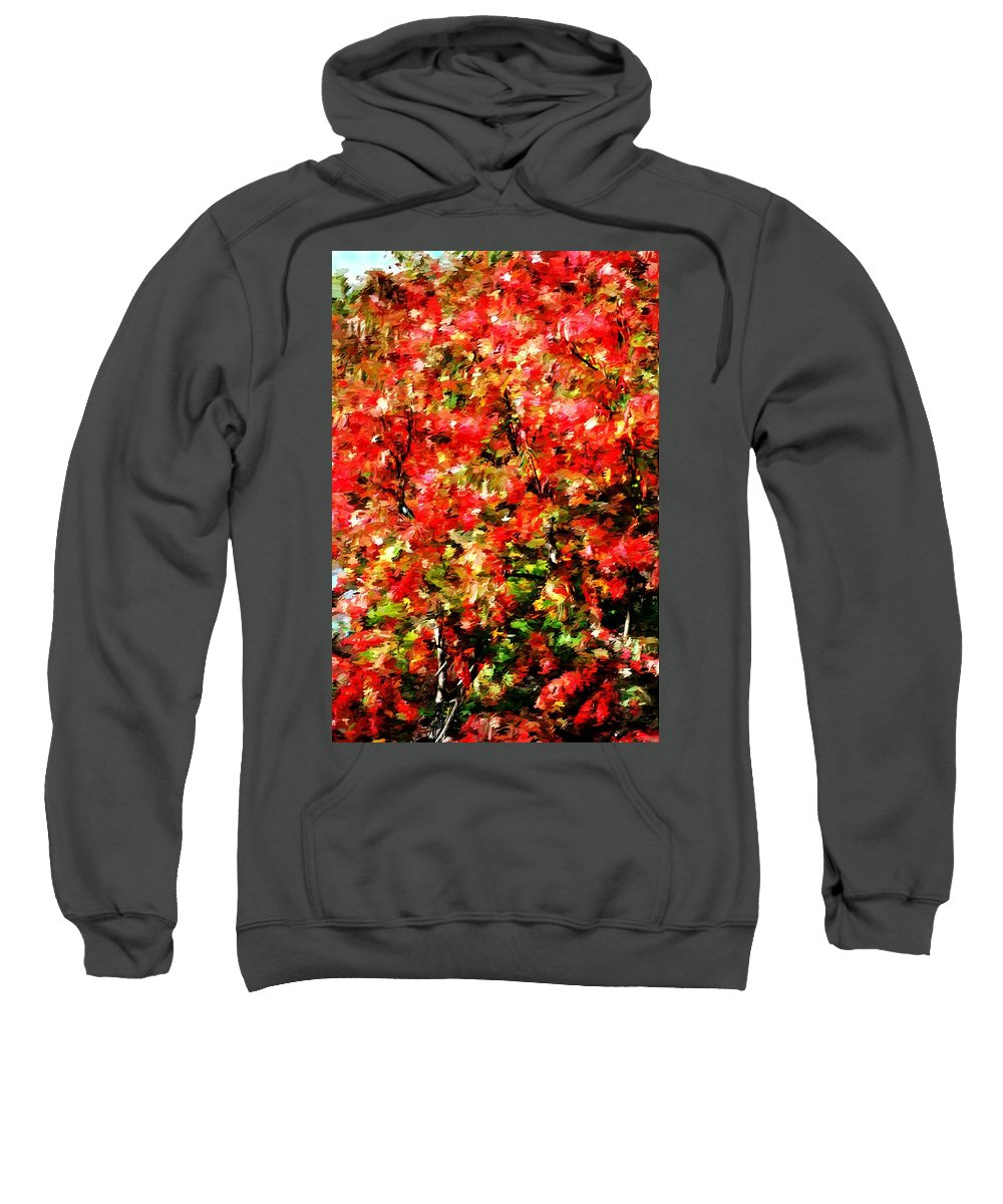 Abstract Digital Photo Sweatshirt featuring the photograph Early Color Painting by David Lane