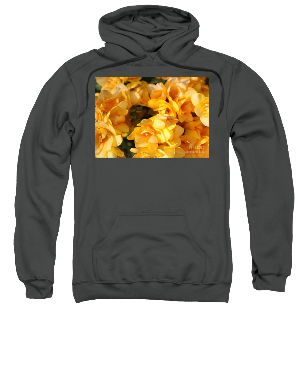 Spring Garden Sweatshirt featuring the photograph Easter Beauties by Carol Groenen