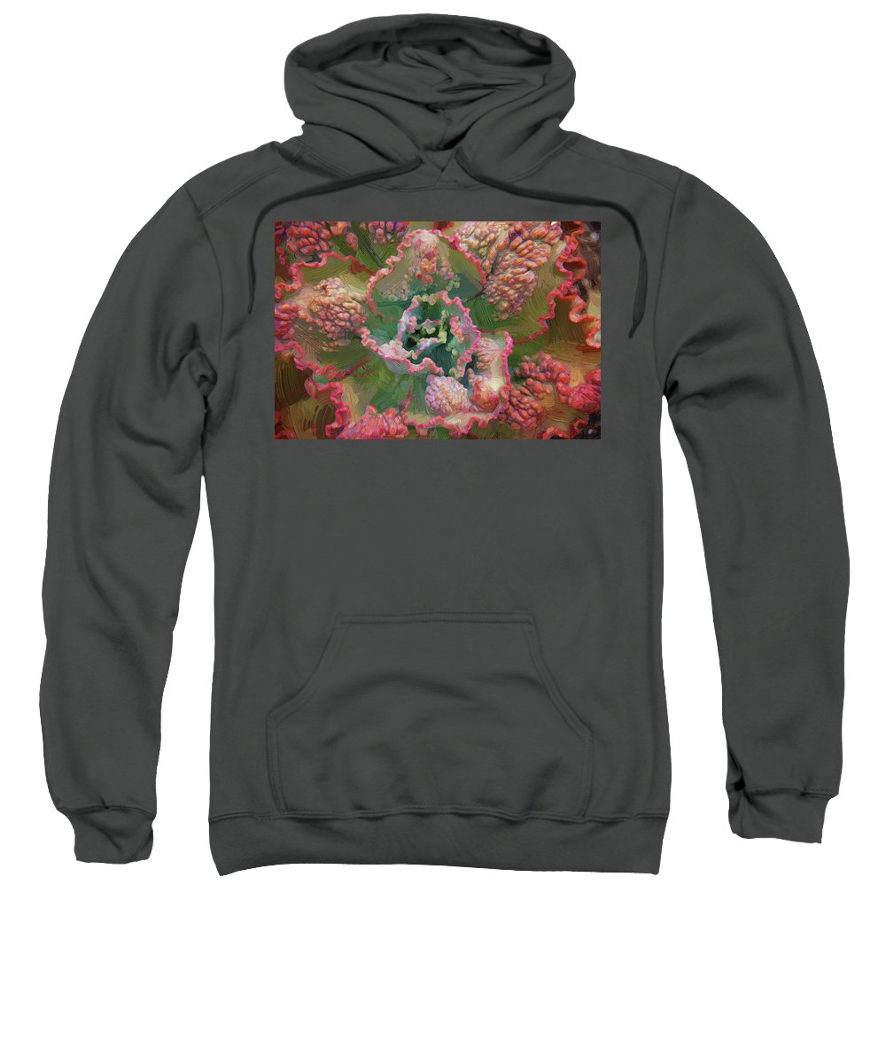 Echeveria Sweatshirt featuring the photograph Echeveria Plant At Balboa Park 2 by Kenneth Roberts