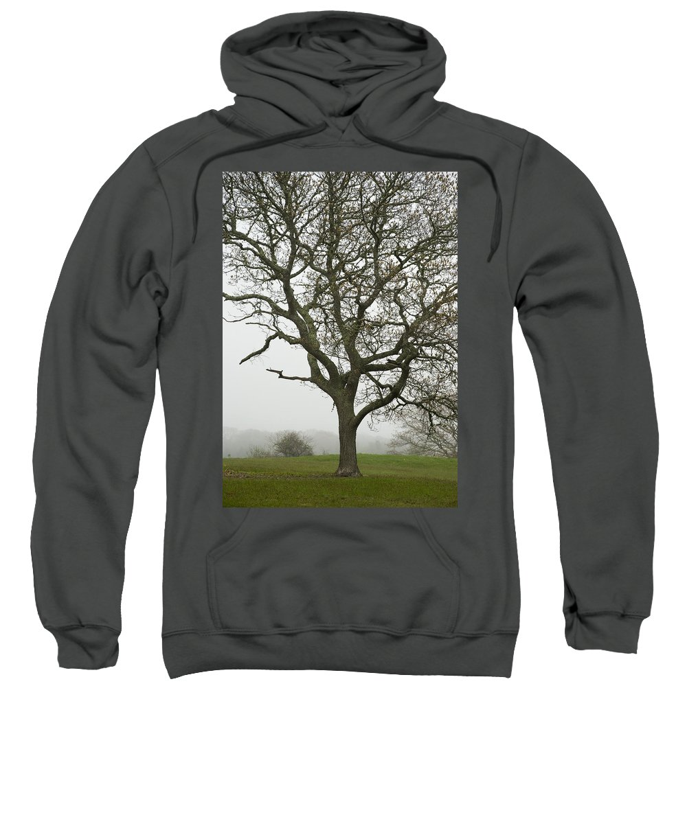 Edgartown Sweatshirt featuring the photograph Edgartown Scene by Charles Harden