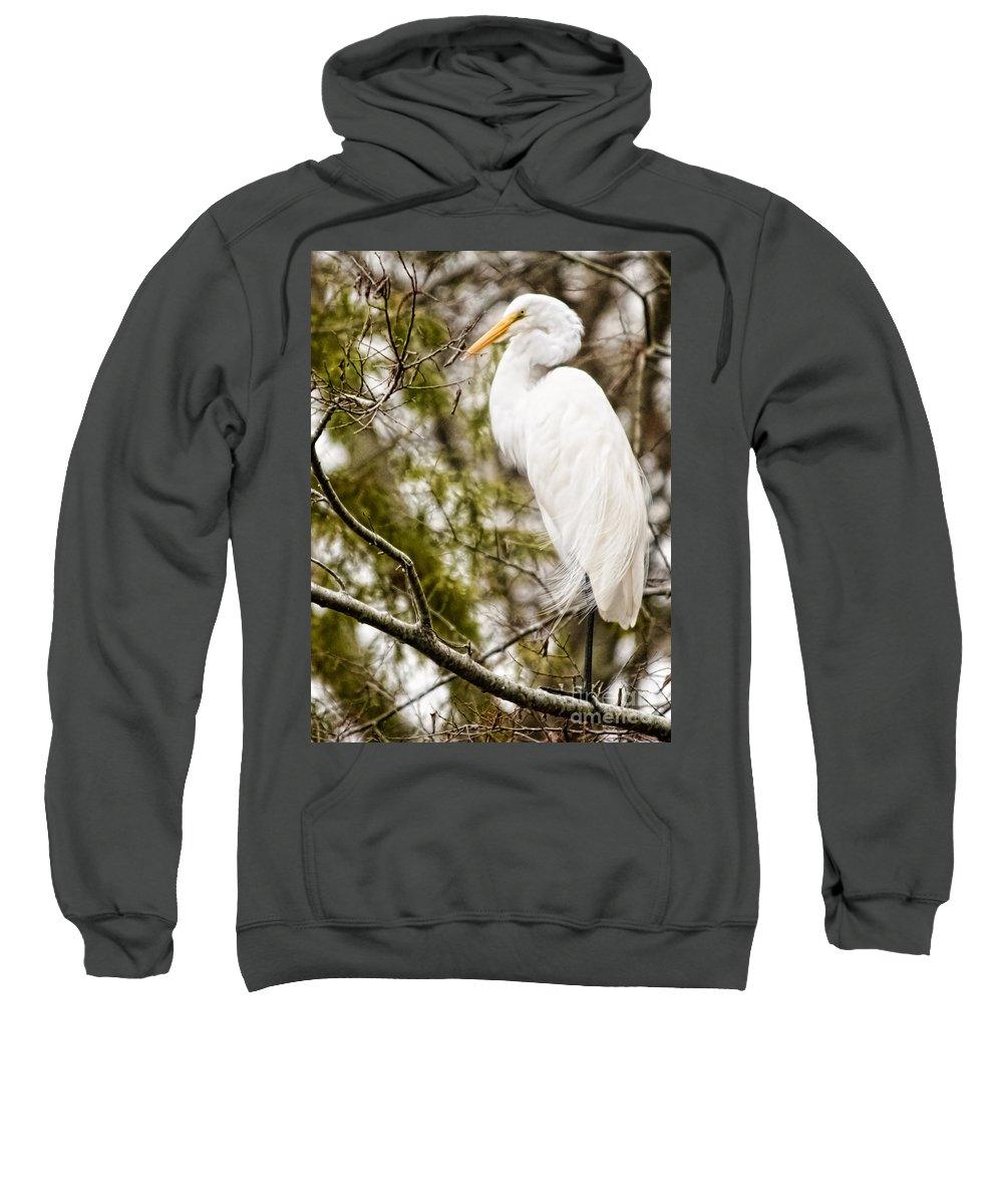 Egret Sweatshirt featuring the photograph Egret by Gaby Swanson