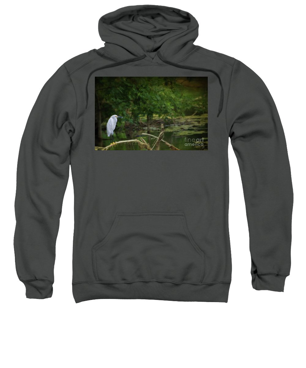 Fine Art Photography Sweatshirt featuring the photograph Egret by John Strong