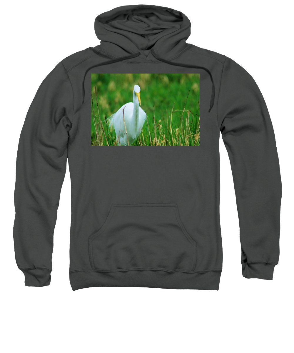 Egret Sweatshirt featuring the photograph Egret Stare Down by Jeff Swan