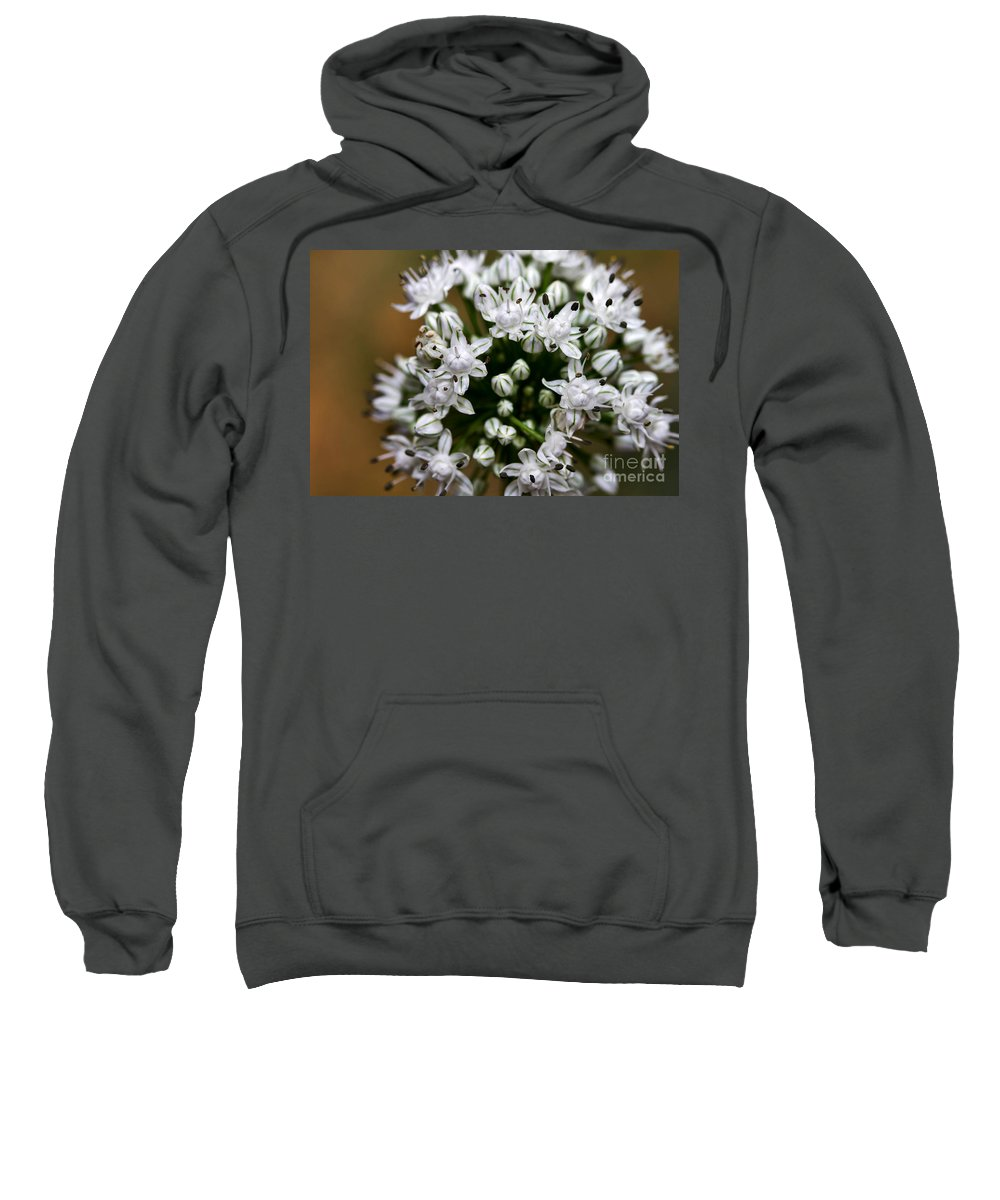 Flower Sweatshirt featuring the photograph Egyptian Onion by Louise Heusinkveld