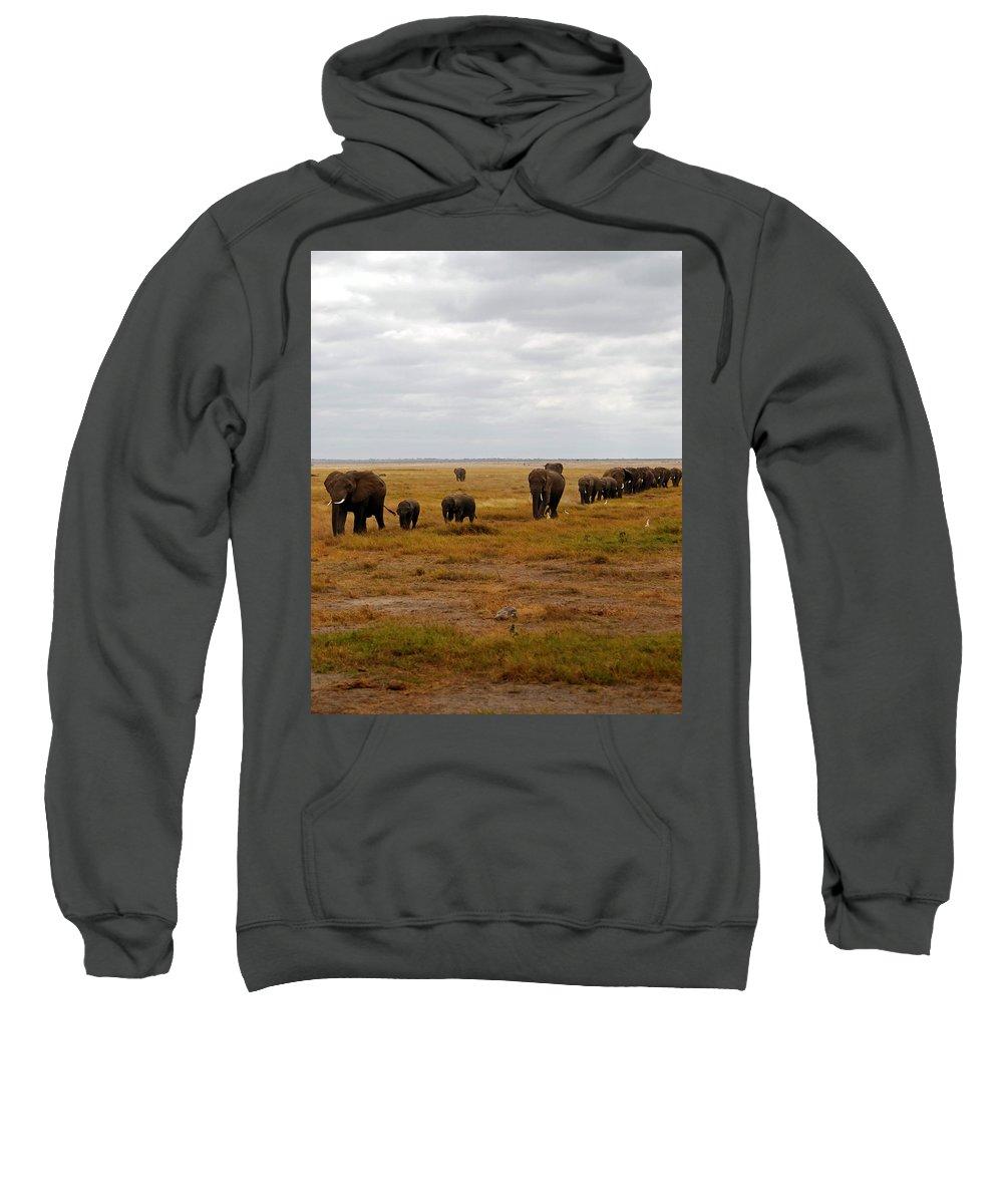 Elephants Sweatshirt featuring the photograph Elephant Herd by Pamela Peters