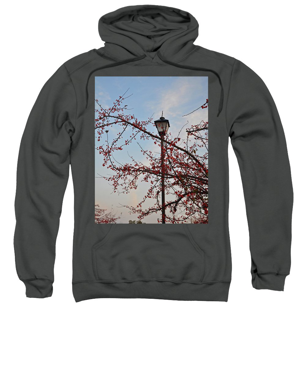 Berry Sweatshirt featuring the photograph Embrace The Light by Brittany Horton