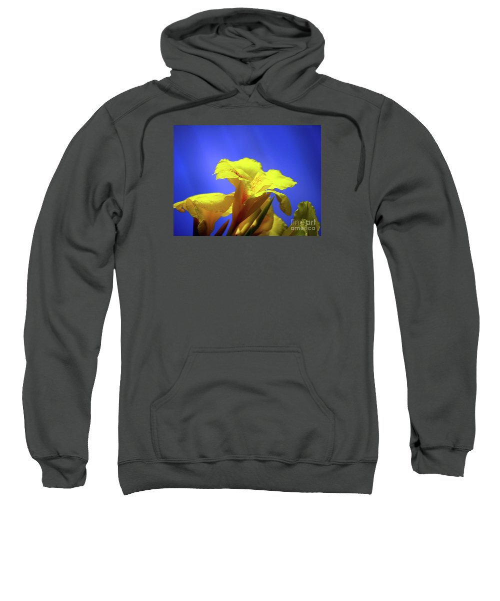 Fine Art Photography Sweatshirt featuring the photograph Emerging Into The Light II by Patricia Griffin Brett