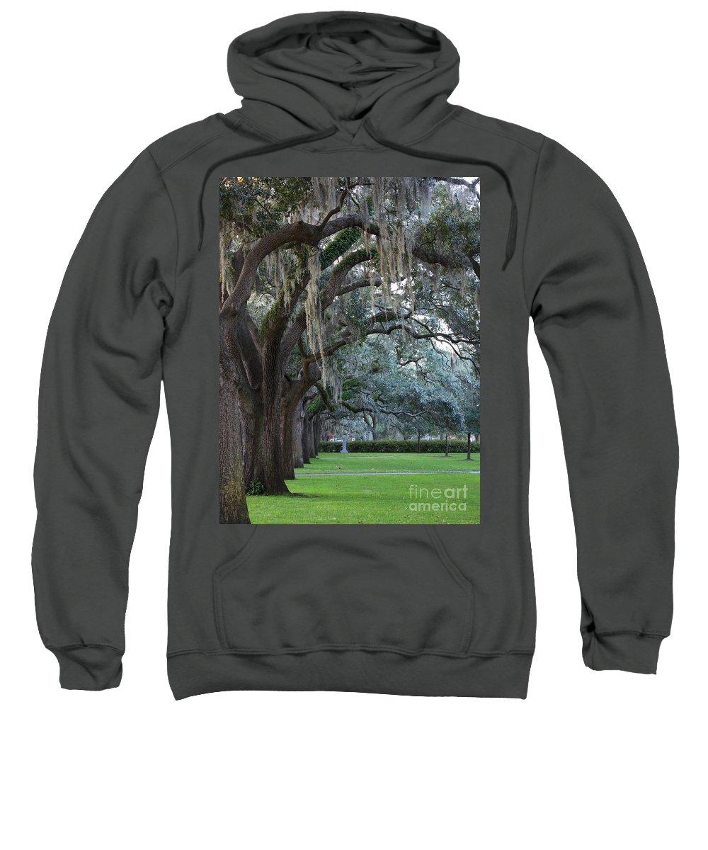 Carol Groenen Sweatshirt featuring the photograph Emmet Park In Savannah by Carol Groenen