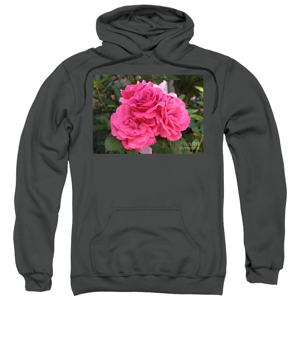 Pink Sweatshirt featuring the photograph Energizing Pink Roses by Carol Groenen
