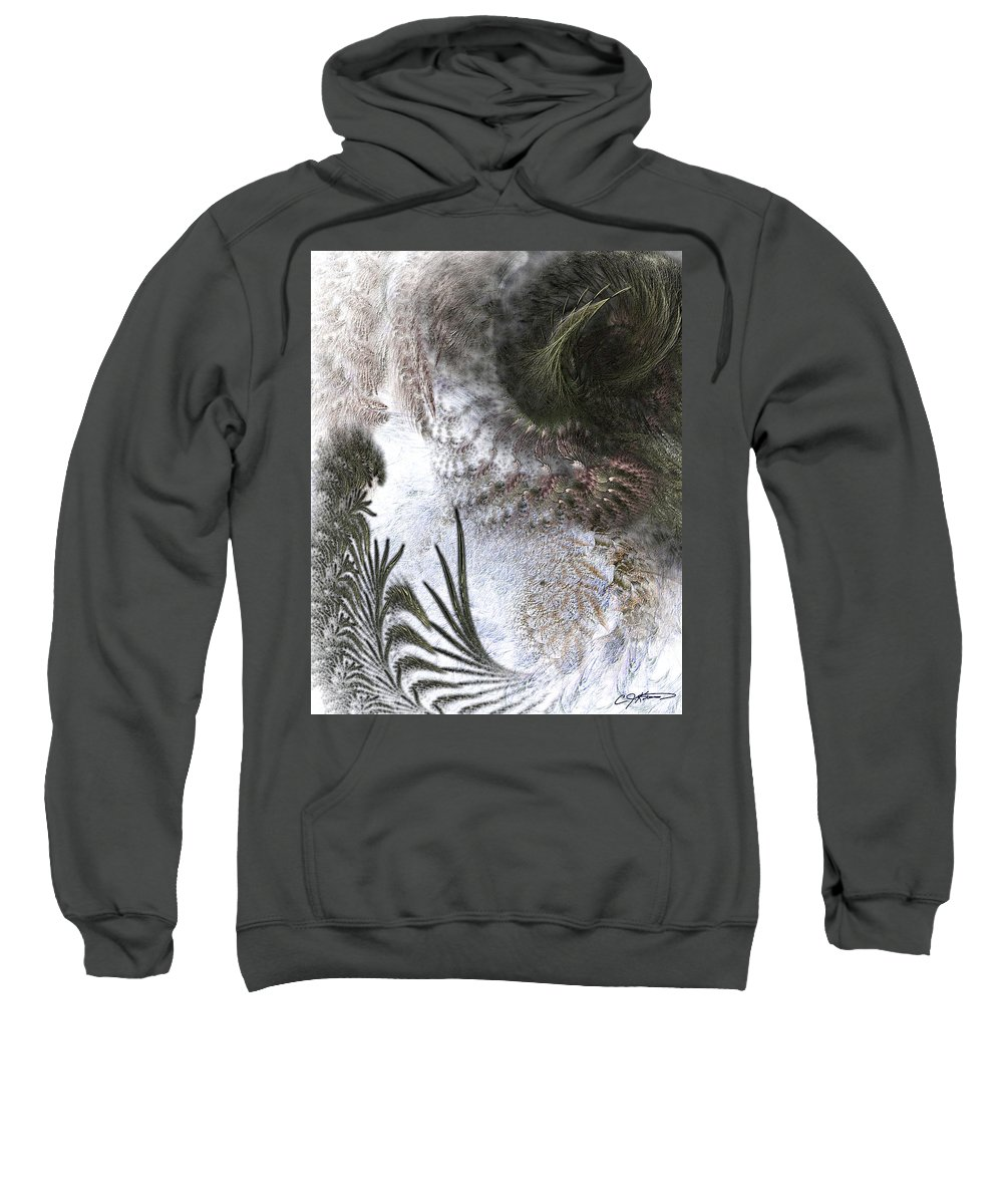 Abstract Sweatshirt featuring the digital art Environmental Transitions by Casey Kotas