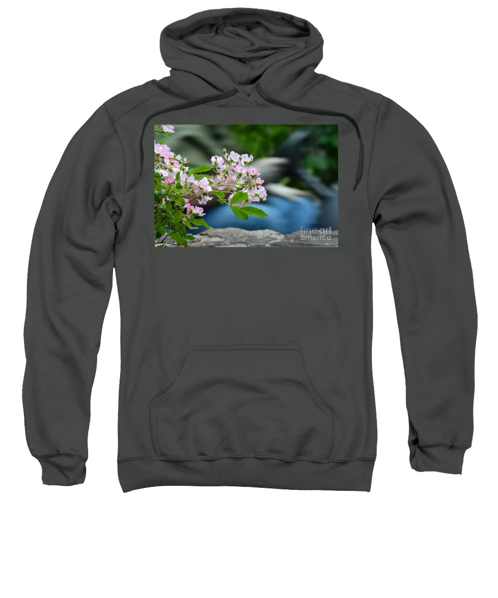 Especially For You Sweatshirt featuring the photograph Especially For You by Maria Urso