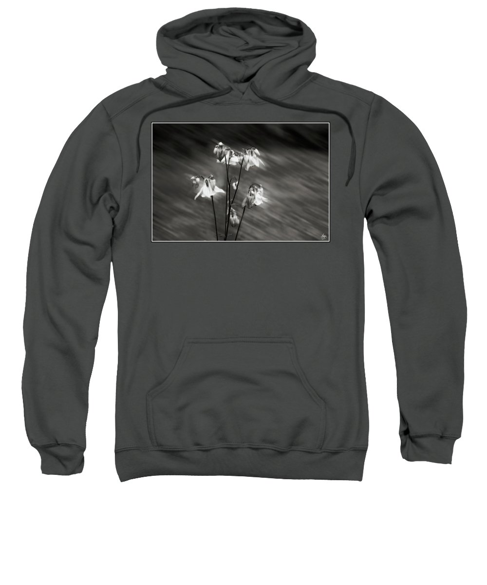 Columbine Sweatshirt featuring the photograph Ethereal Columbine Monochrome by Wayne King