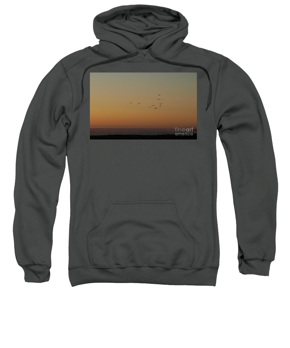 Brown Sweatshirt featuring the photograph Evening Flight by Jacklyn Duryea Fraizer