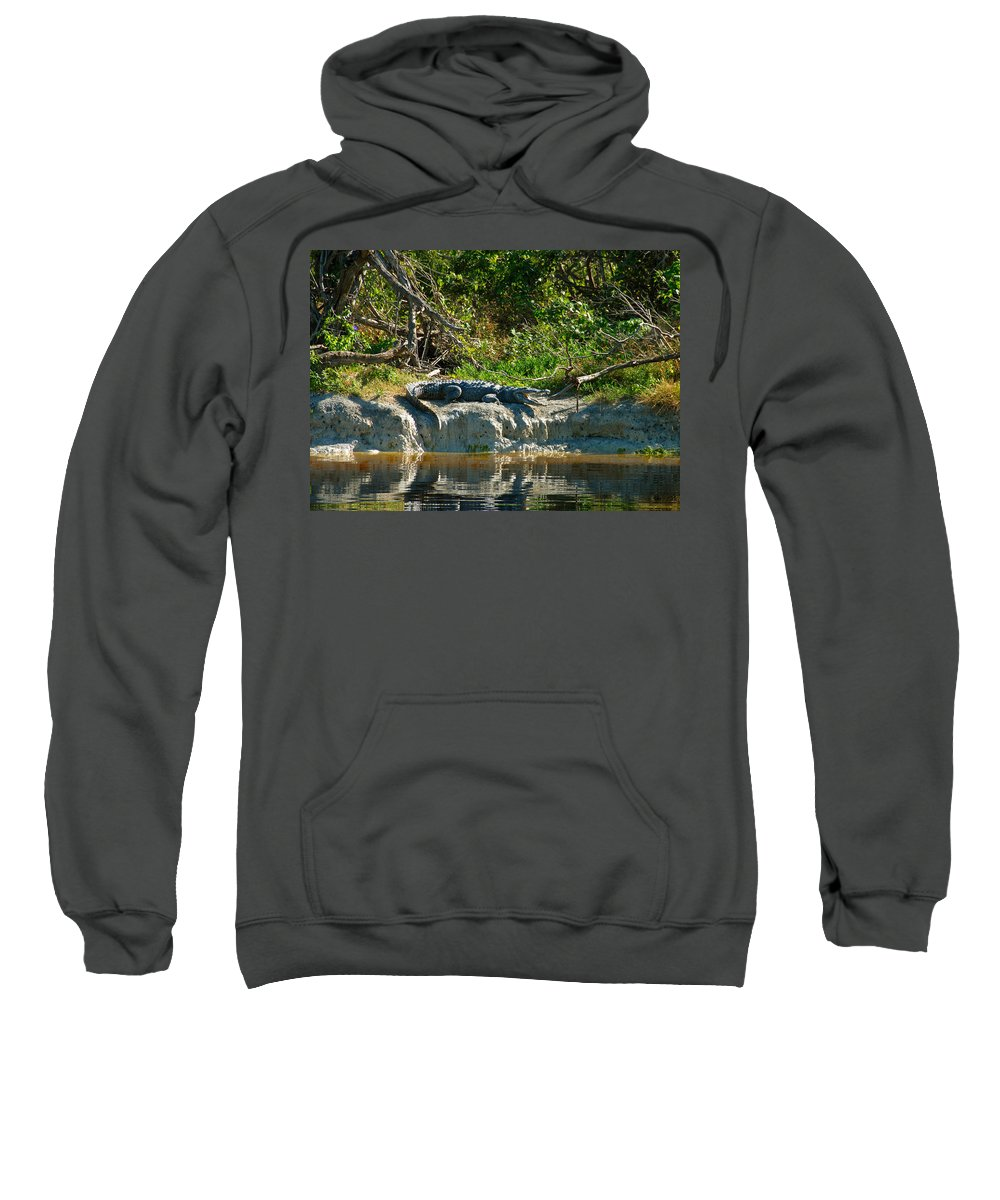 Everglades National Park Sweatshirt featuring the photograph Everglades Crocodile by David Lee Thompson