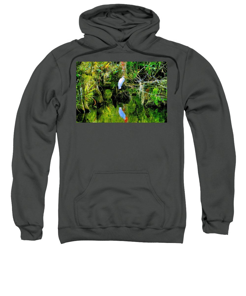Everglades Sweatshirt featuring the painting Everglades Egret by David Lee Thompson